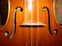 バイオリン・胴・250.jpg