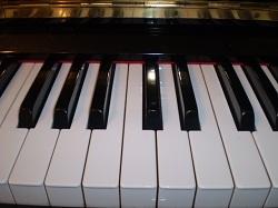 鍵盤アップ・250.jpg